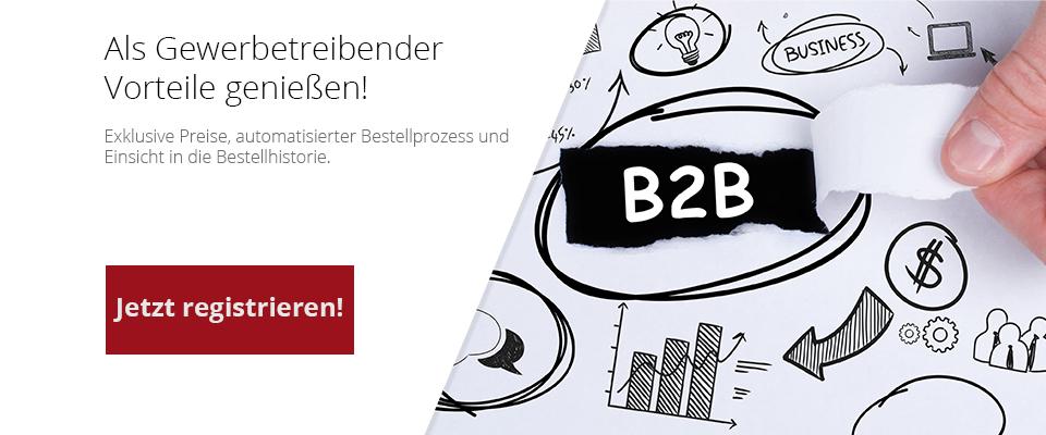 2021-12-B2B
